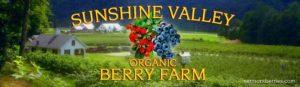 Sunshine Valley Berry Farm